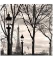 Photo de La Tour Eiffel, Trocadéro par Kasra