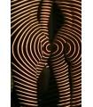 Corps magnétiques par Dani Olivier