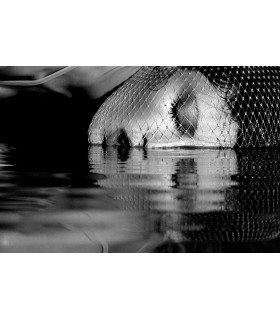 Waterproof mascara by Claude Guillaumin