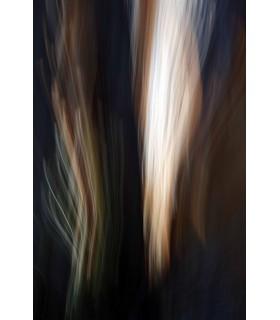 Photo sur le motif par Jean-Baptiste Isambert