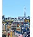 Paris Memphis Tour Eiffel par Stéphane Franck Berthelot - SfB -